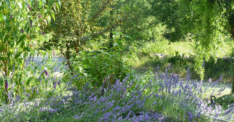 espace protégé pour les enfants au milieu de la nature - Gites les Princes - 07200 Lanas - Ardèche